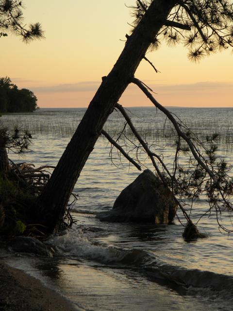 Joe's lake