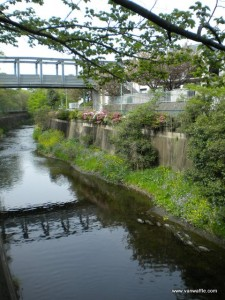 Sen-Kawa canal
