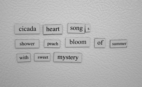 Cicada haiku
