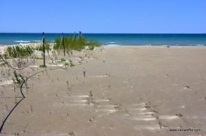 West beach at Presqu'ile