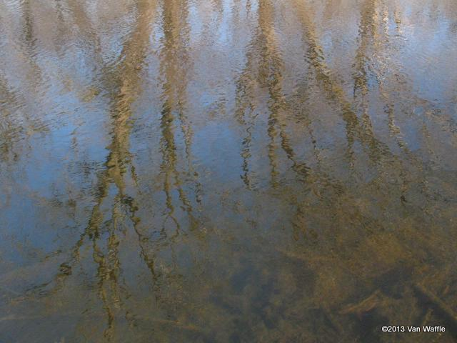 Eramosa River reflections