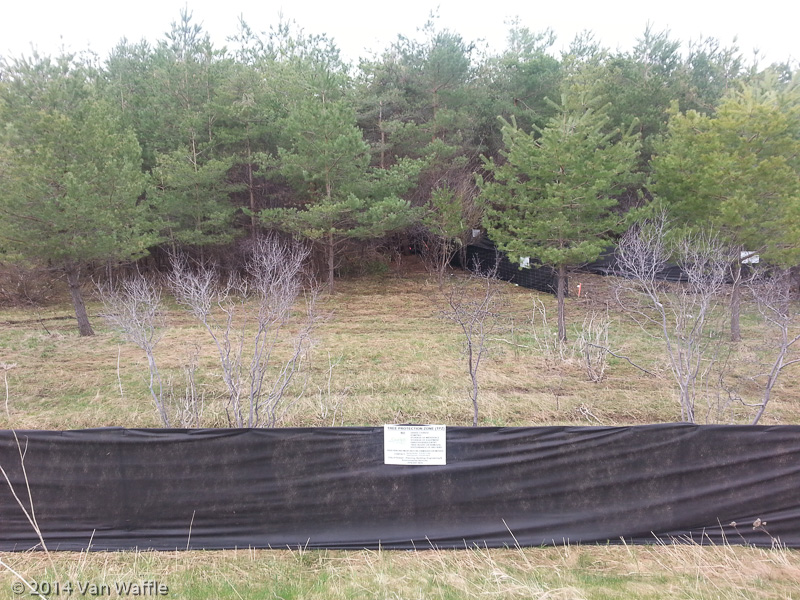 Tree protection zone